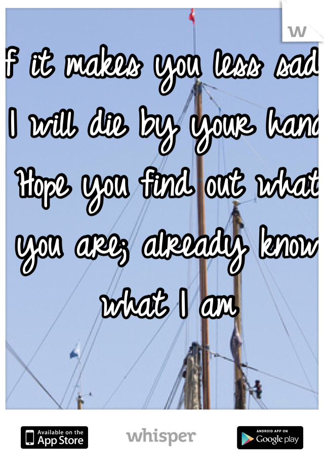 If it makes you less sad, I will die by your hand Hope you find out what you are; already know what I am