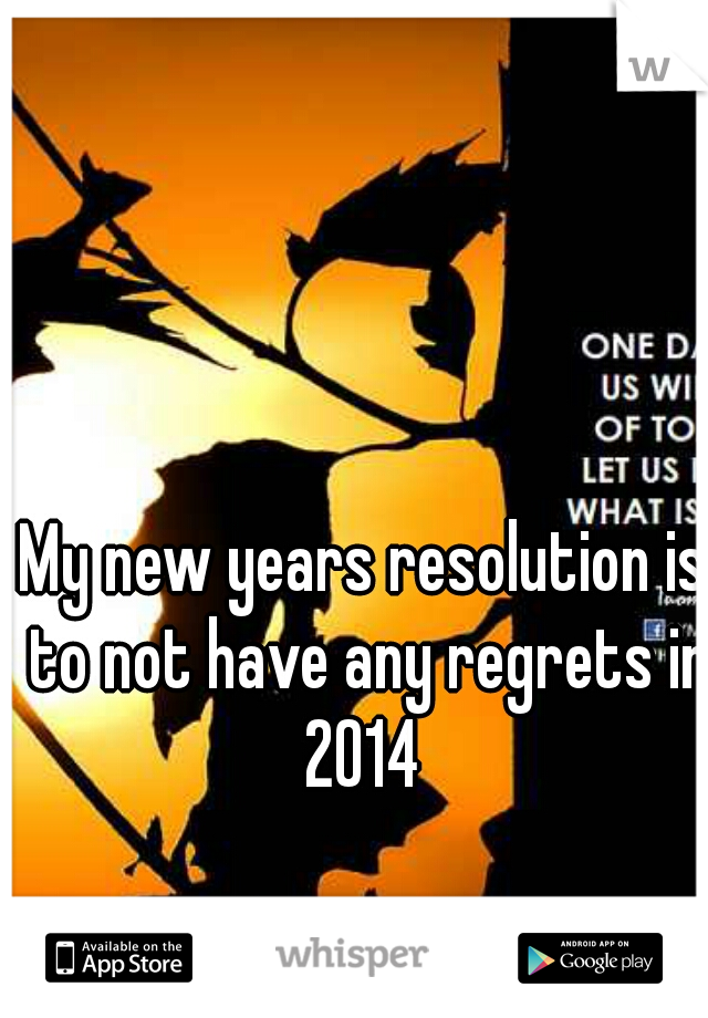 My new years resolution is to not have any regrets in 2014