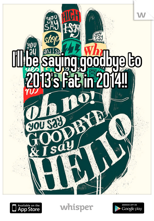 I'll be saying goodbye to 2013's fat in 2014!!
