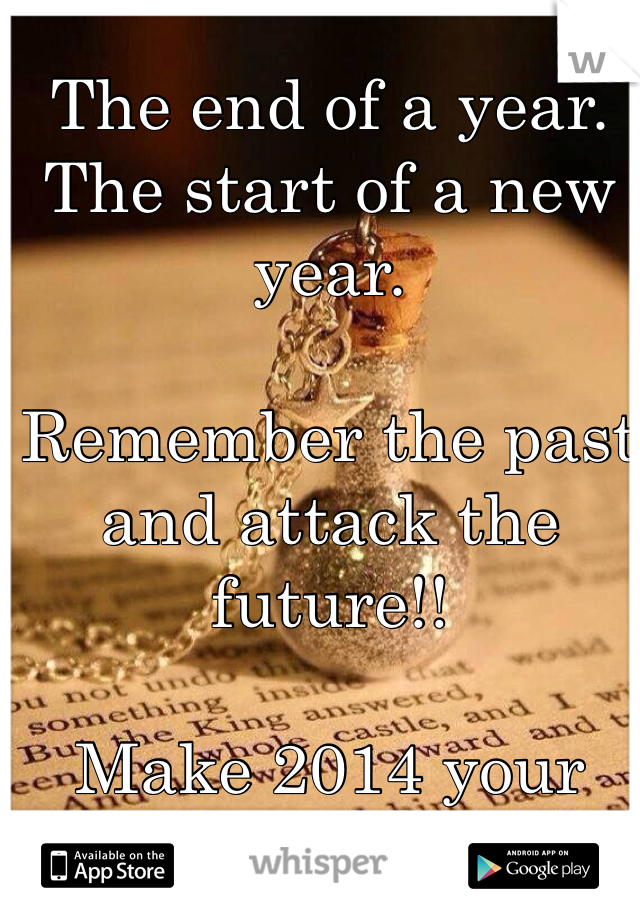 The end of a year. The start of a new year.   Remember the past and attack the future!!  Make 2014 your bitch!!!!!