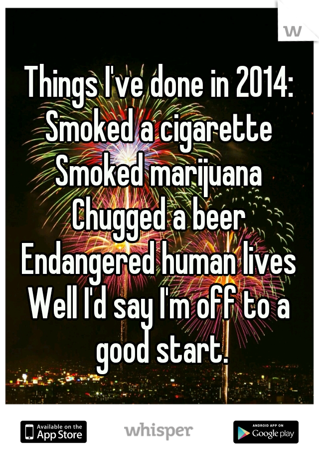Things I've done in 2014: Smoked a cigarette Smoked marijuana Chugged a beer Endangered human lives  Well I'd say I'm off to a good start.