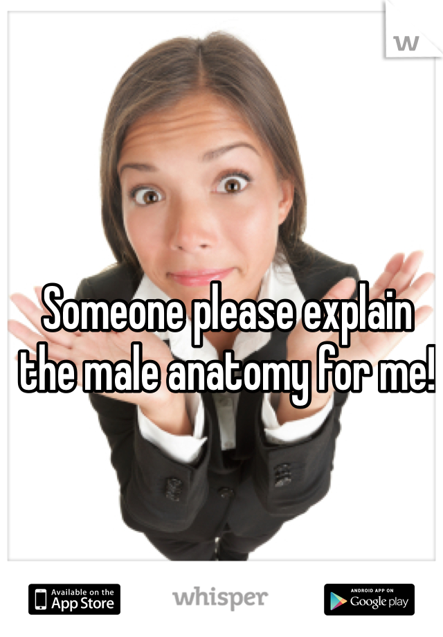 Someone please explain the male anatomy for me!