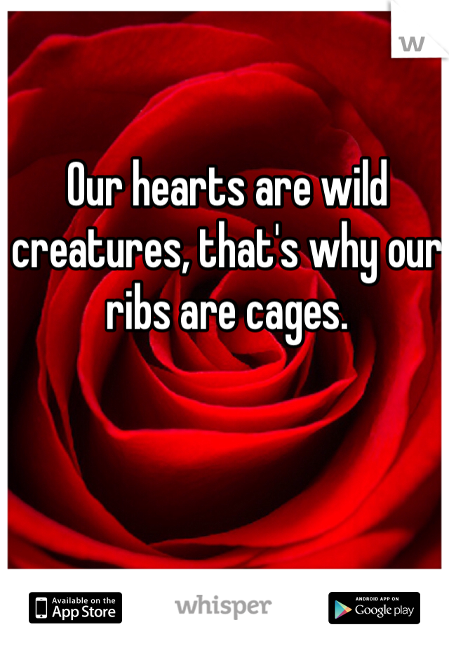Our hearts are wild creatures, that's why our ribs are cages.