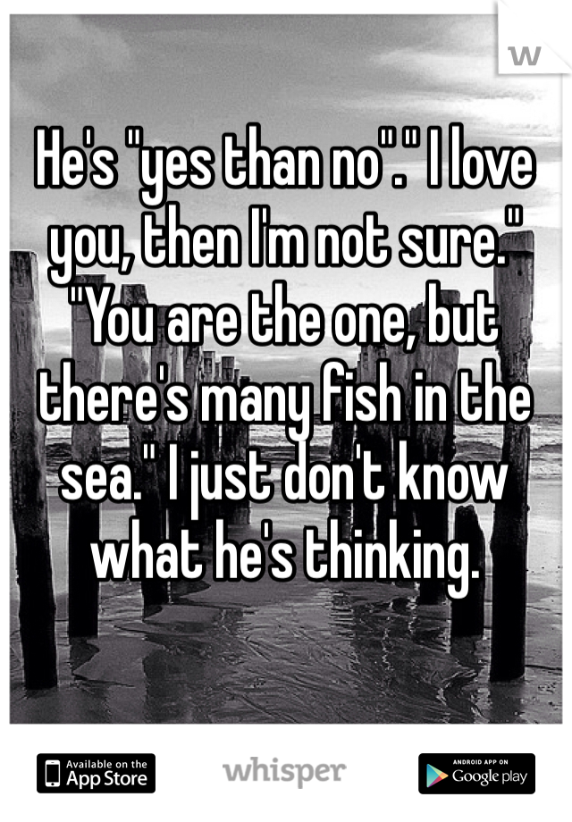 """He's """"yes than no""""."""" I love you, then I'm not sure."""" """"You are the one, but there's many fish in the sea."""" I just don't know what he's thinking."""