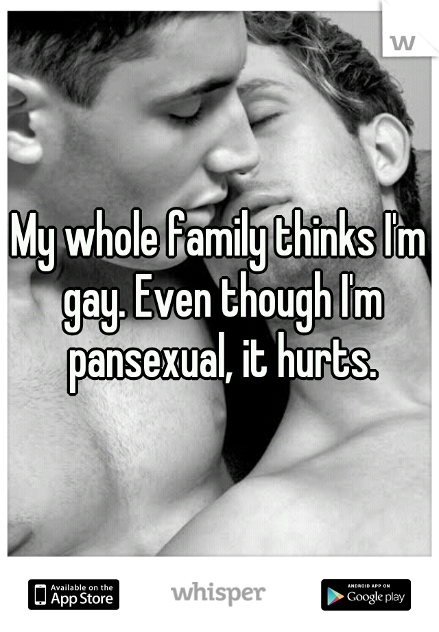 My whole family thinks I'm gay. Even though I'm pansexual, it hurts.