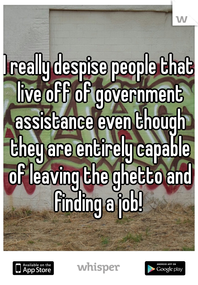 I really despise people that live off of government assistance even though they are entirely capable of leaving the ghetto and finding a job!