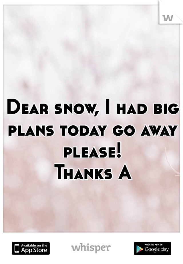 Dear snow, I had big plans today go away please!  Thanks A