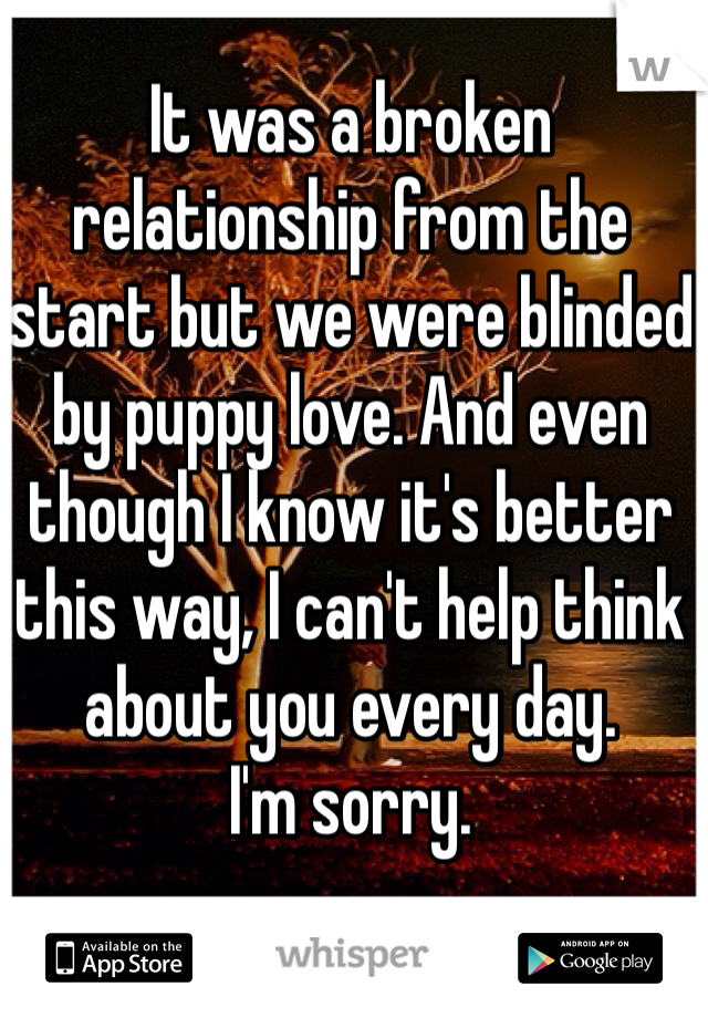 It was a broken relationship from the start but we were blinded by puppy love. And even though I know it's better this way, I can't help think about you every day.  I'm sorry.
