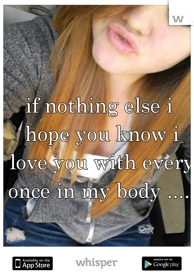 if nothing else i hope you know i love you with every once in my body ......