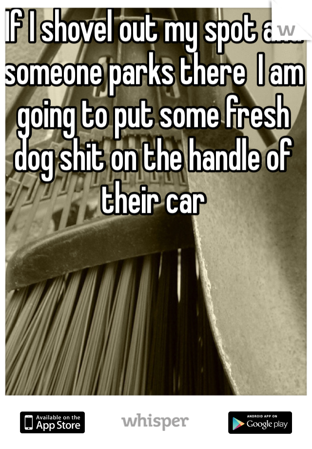 If I shovel out my spot and someone parks there  I am going to put some fresh dog shit on the handle of their car