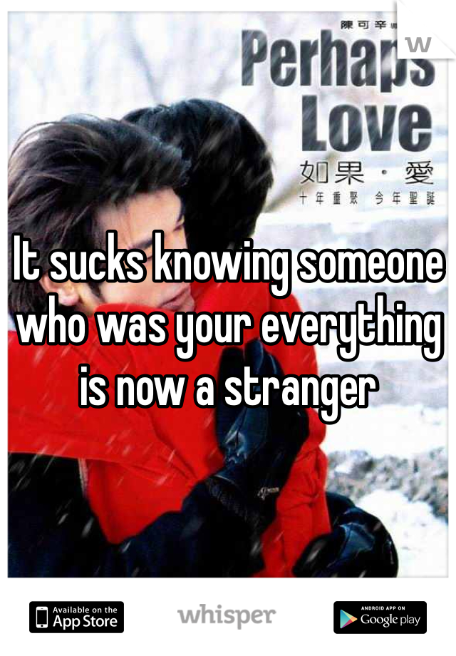 It sucks knowing someone who was your everything is now a stranger