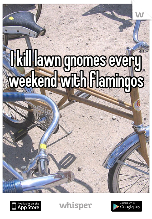 I kill lawn gnomes every weekend with flamingos