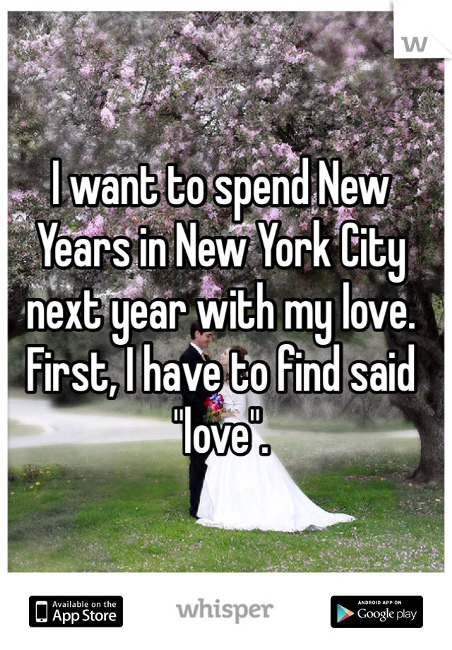 "I want to spend New Years in New York City next year with my love. First, I have to find said ""love""."
