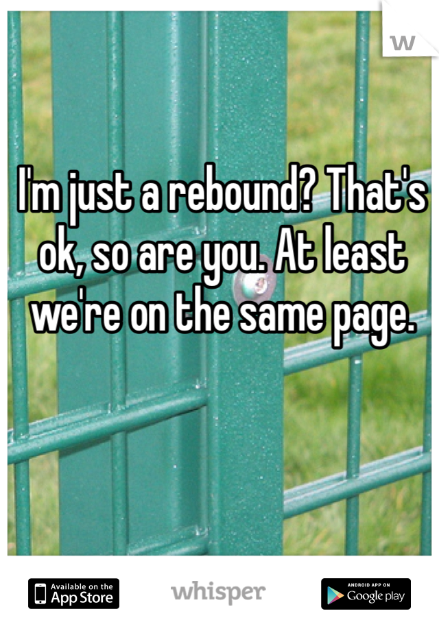 I'm just a rebound? That's ok, so are you. At least we're on the same page.
