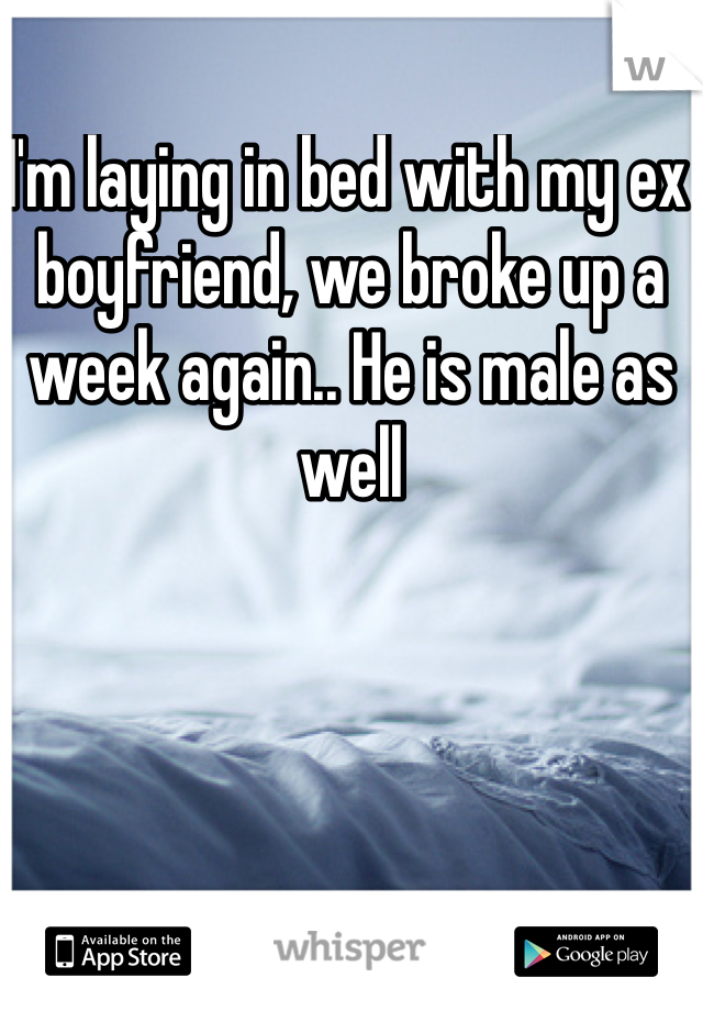 I'm laying in bed with my ex boyfriend, we broke up a week again.. He is male as well