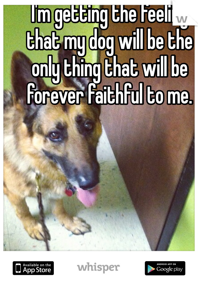 I'm getting the feeling that my dog will be the only thing that will be forever faithful to me.