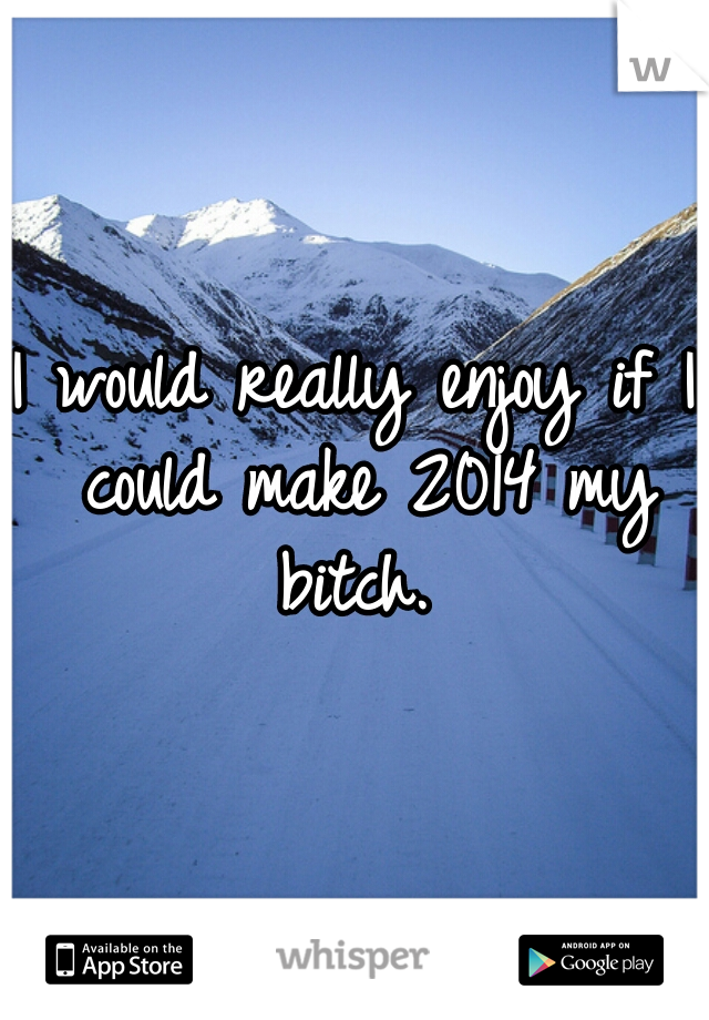 I would really enjoy if I could make 2014 my bitch.