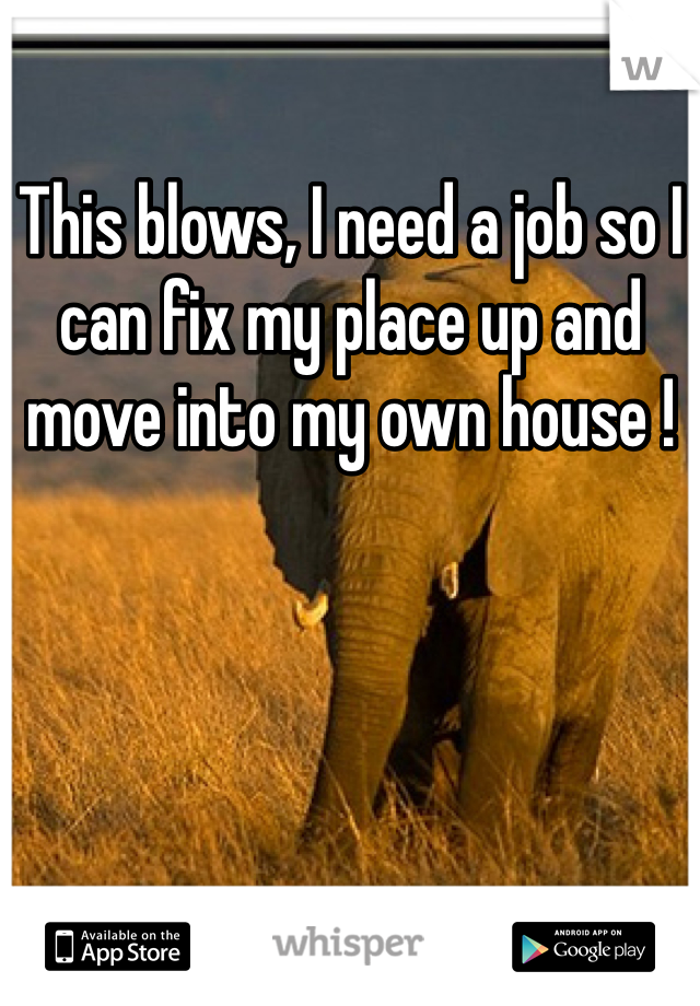 This blows, I need a job so I can fix my place up and move into my own house !