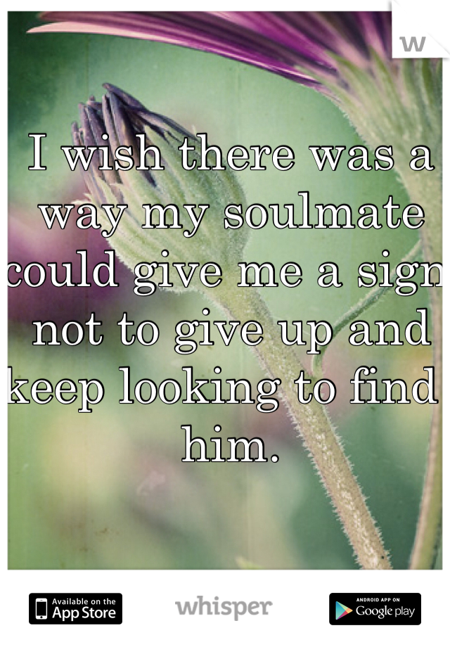 I wish there was a way my soulmate could give me a sign not to give up and keep looking to find  him.
