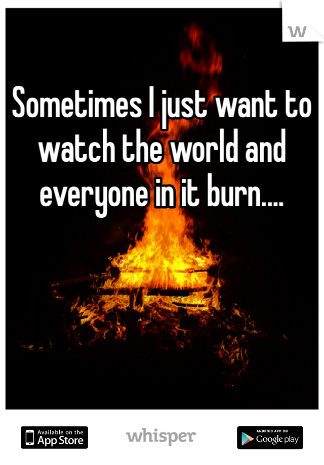 Sometimes I just want to watch the world and everyone in it burn....