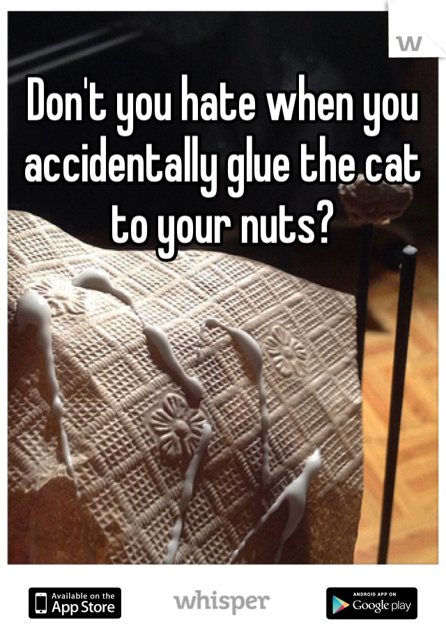 Don't you hate when you accidentally glue the cat to your nuts?