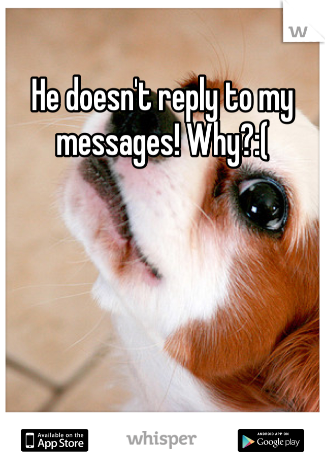 He doesn't reply to my messages! Why?:(