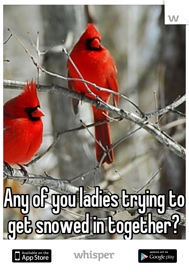 Any of you ladies trying to get snowed in together?