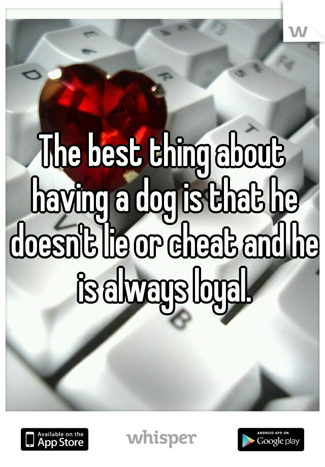 The best thing about having a dog is that he doesn't lie or cheat and he is always loyal.