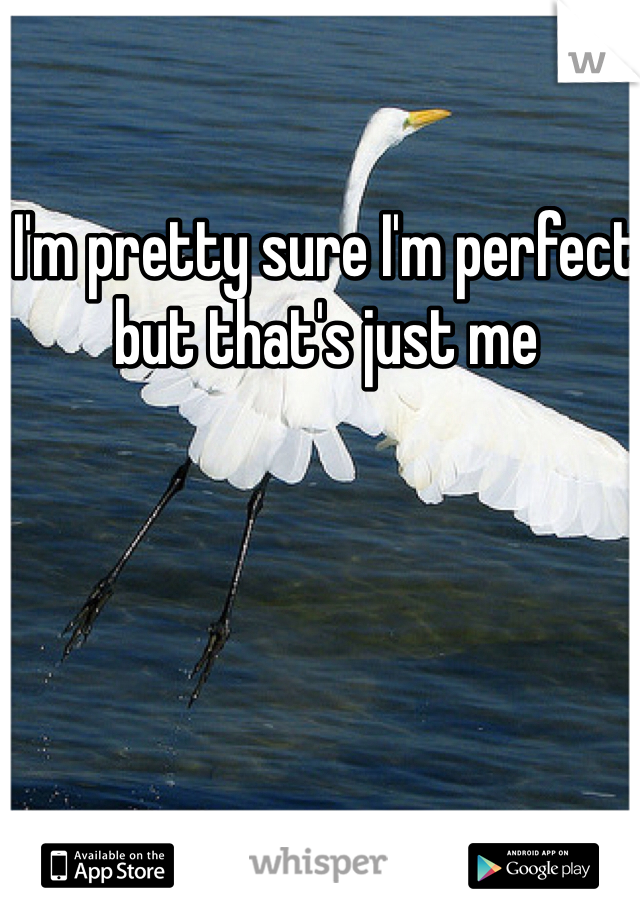 I'm pretty sure I'm perfect but that's just me