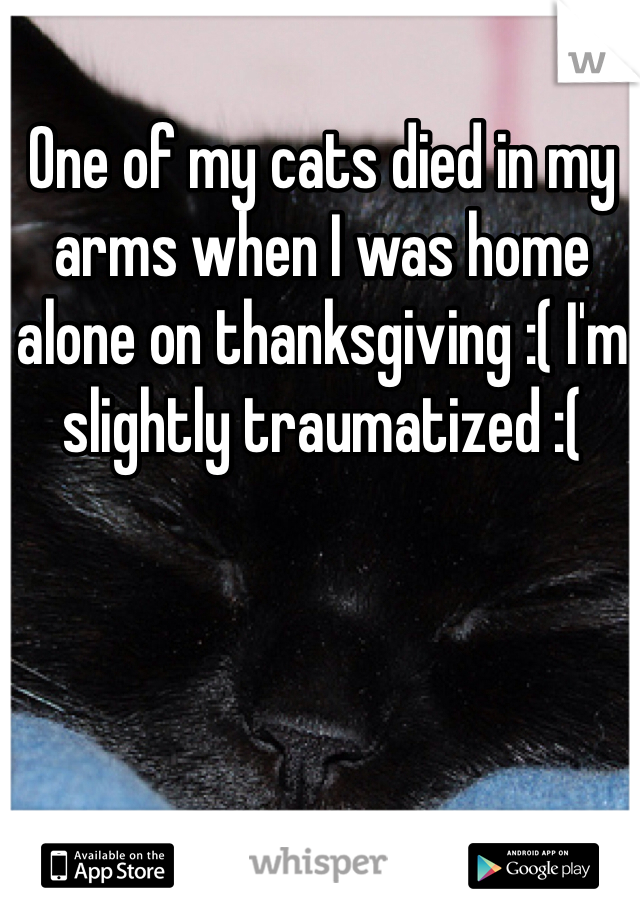 One of my cats died in my arms when I was home alone on thanksgiving :( I'm slightly traumatized :(