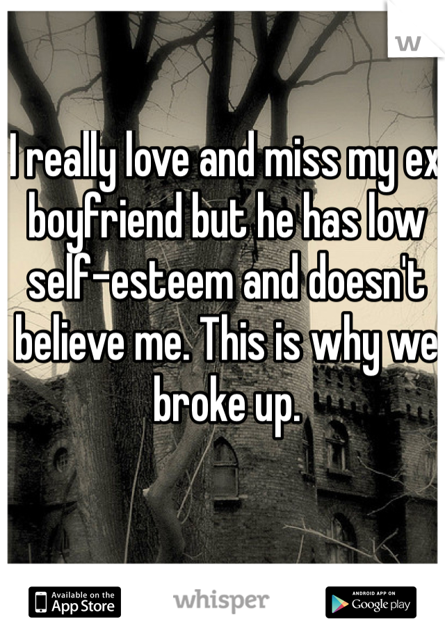 I really love and miss my ex boyfriend but he has low self-esteem and doesn't believe me. This is why we broke up.