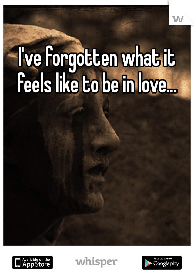 I've forgotten what it feels like to be in love...