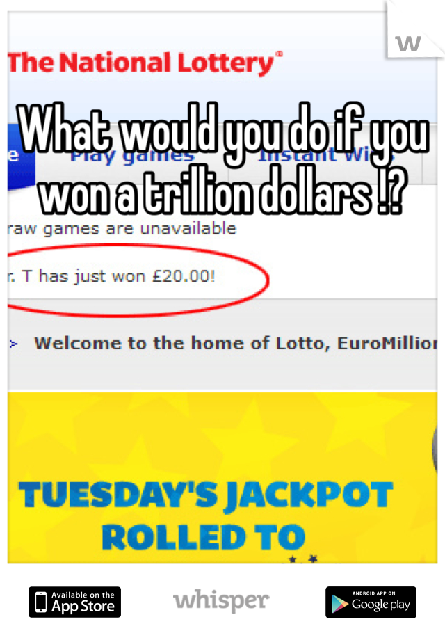 What would you do if you won a trillion dollars !?