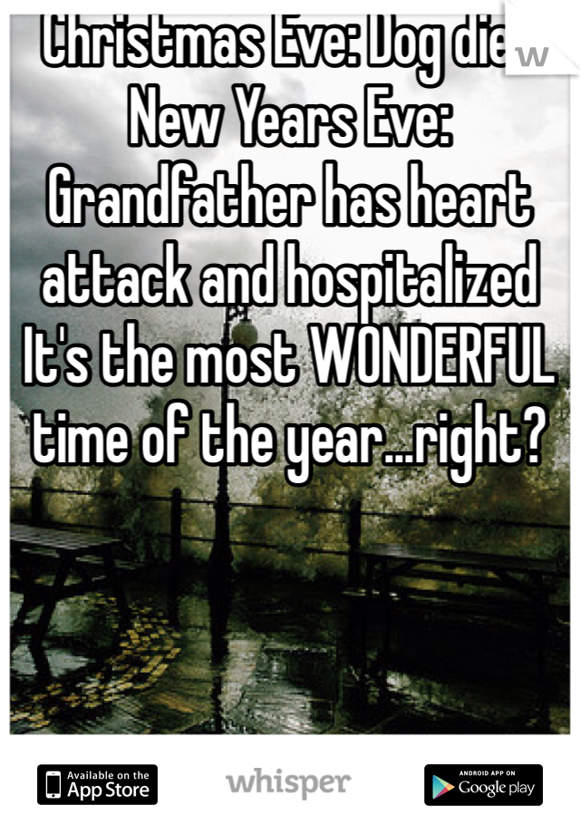 Christmas Eve: Dog dies  New Years Eve: Grandfather has heart attack and hospitalized It's the most WONDERFUL time of the year...right?