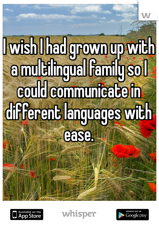 I wish I had grown up with a multilingual family so I could communicate in different languages with ease.