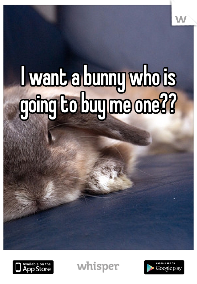 I want a bunny who is going to buy me one??
