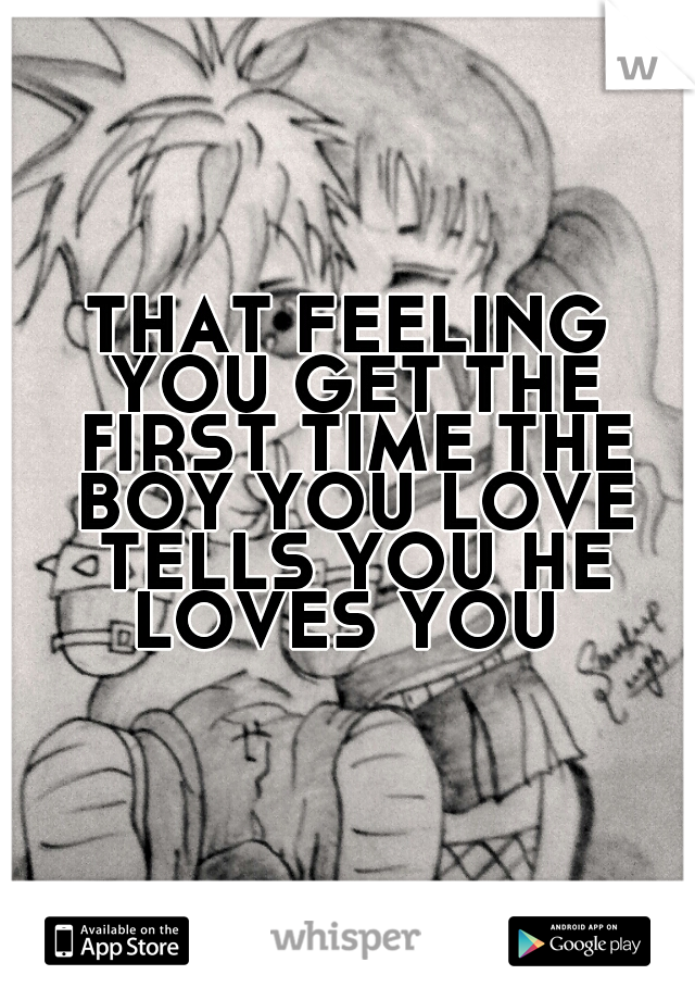 THAT FEELING YOU GET THE FIRST TIME THE BOY YOU LOVE TELLS YOU HE LOVES YOU