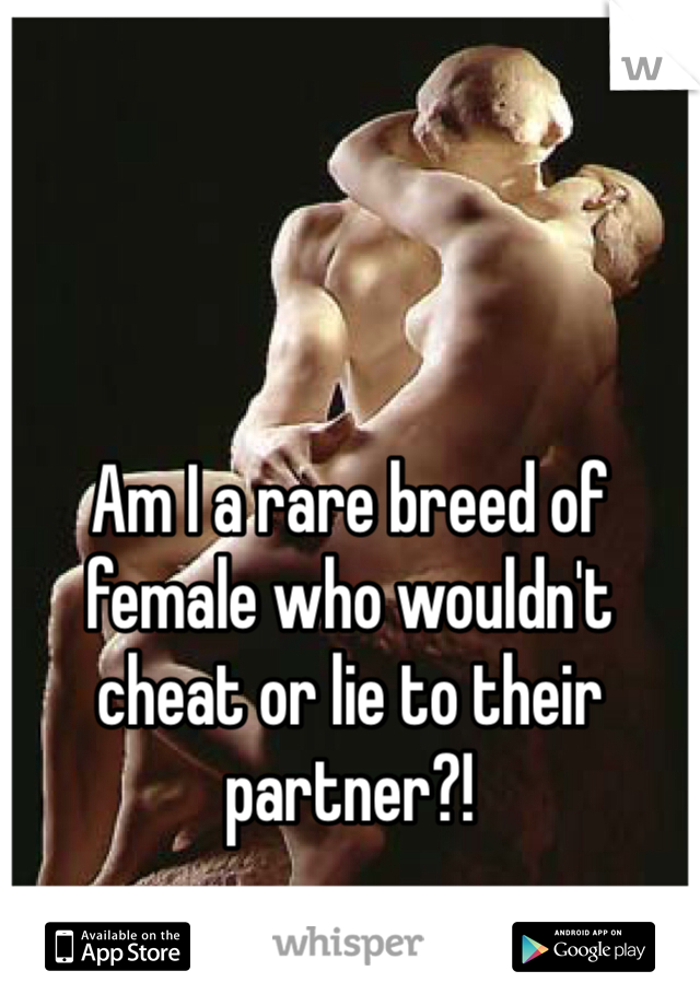 Am I a rare breed of female who wouldn't cheat or lie to their partner?!