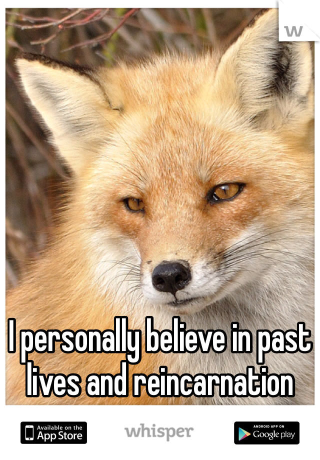 I personally believe in past lives and reincarnation