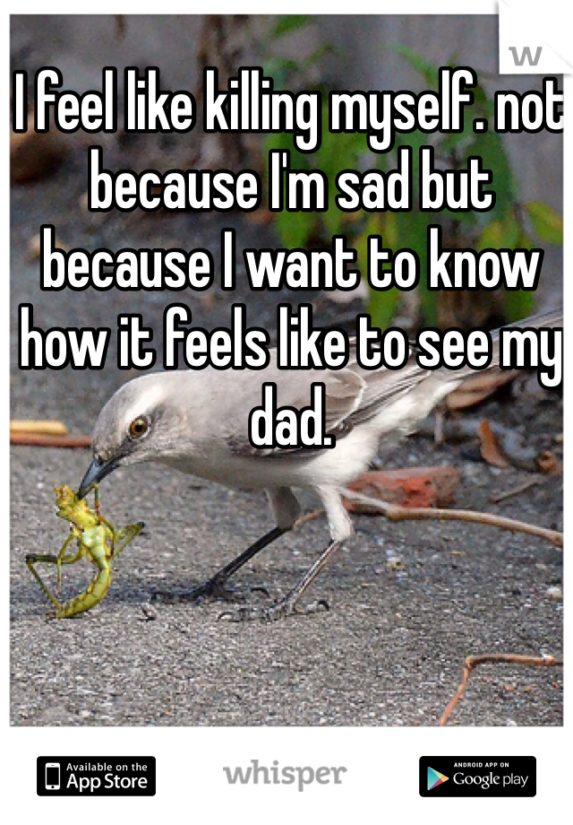 I feel like killing myself. not because I'm sad but because I want to know how it feels like to see my dad.