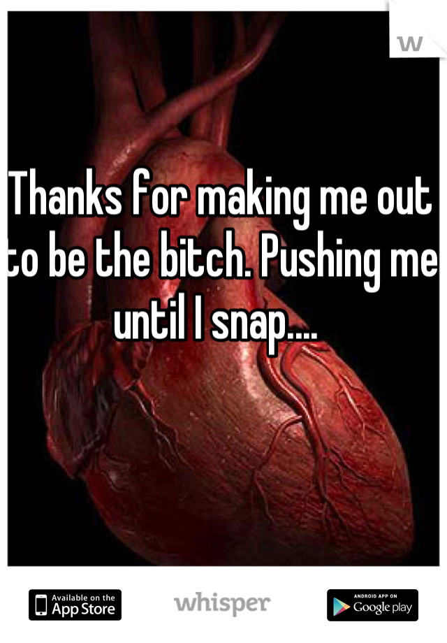 Thanks for making me out to be the bitch. Pushing me until I snap....
