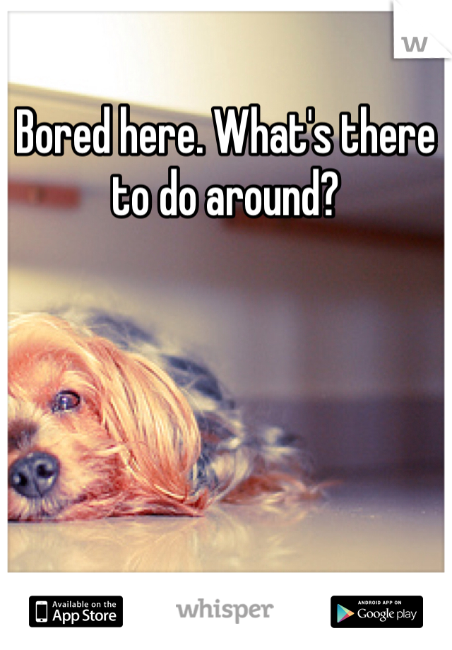 Bored here. What's there to do around?