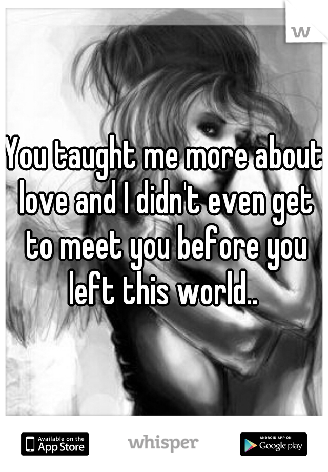You taught me more about love and I didn't even get to meet you before you left this world..