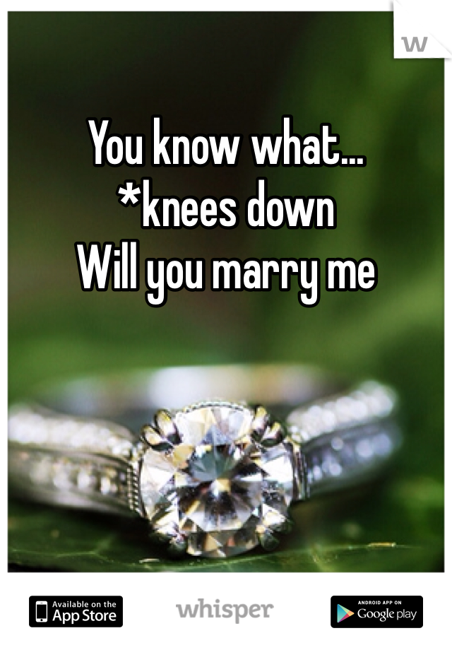 You know what... *knees down Will you marry me