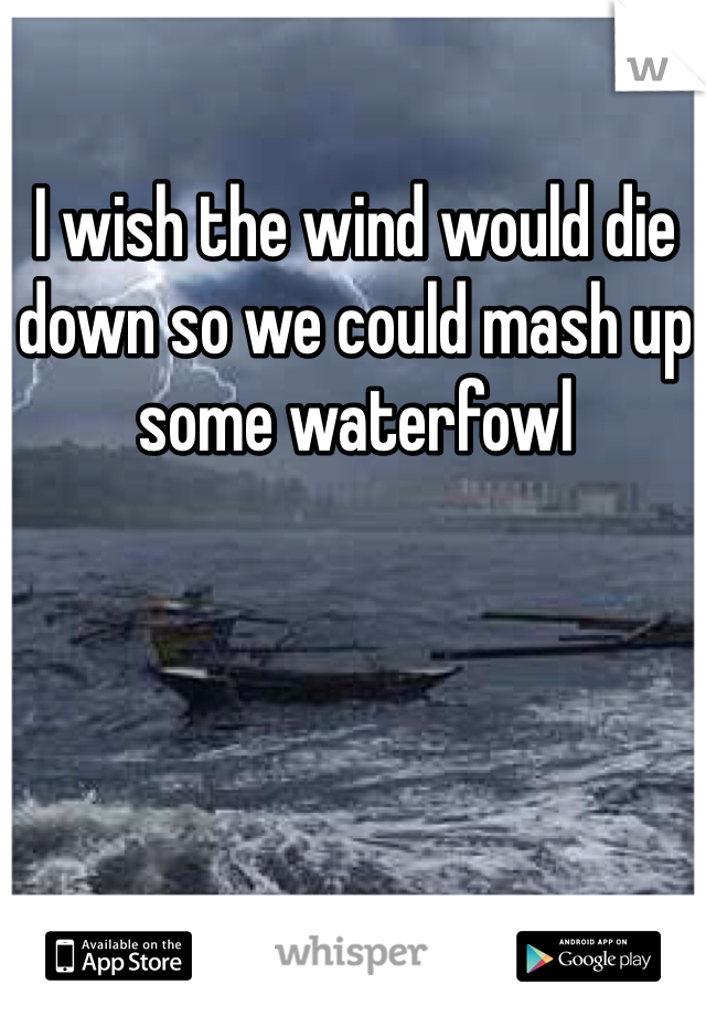 I wish the wind would die down so we could mash up some waterfowl