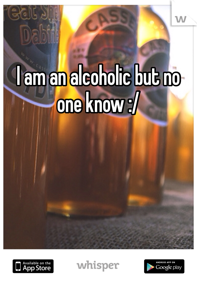 I am an alcoholic but no one know :/