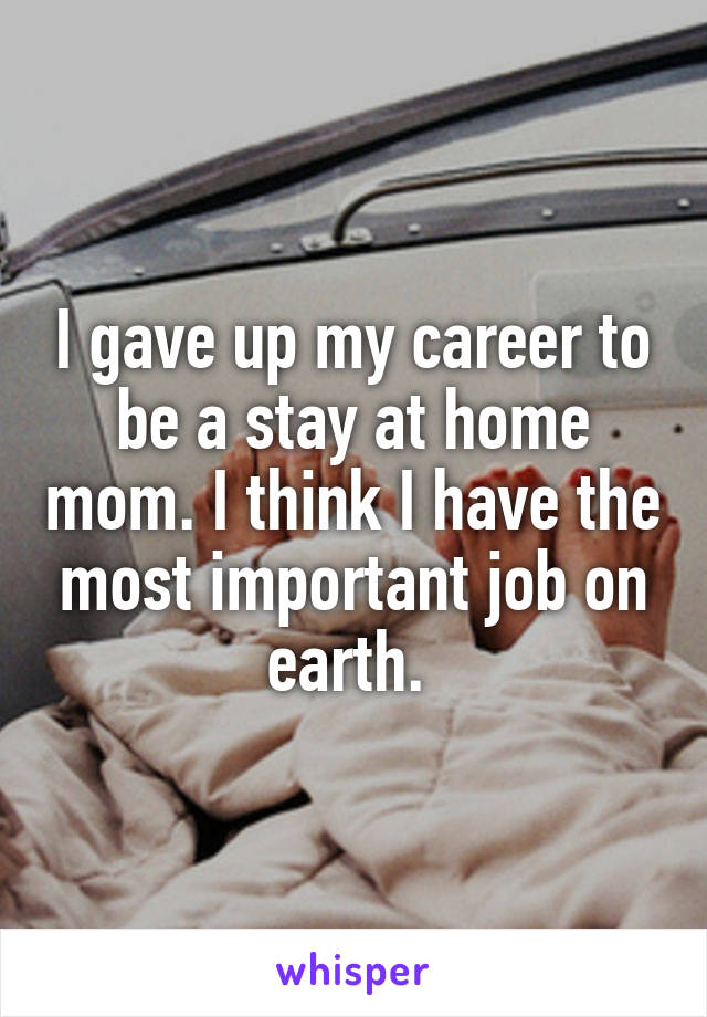 I gave up my career to be a stay at home mom. I think I have the most important job on earth.