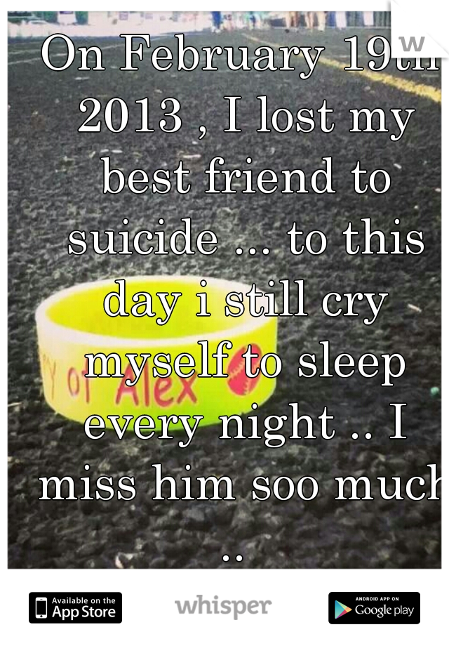 On February 19th 2013 , I lost my best friend to suicide ... to this day i still cry myself to sleep every night .. I miss him soo much ..