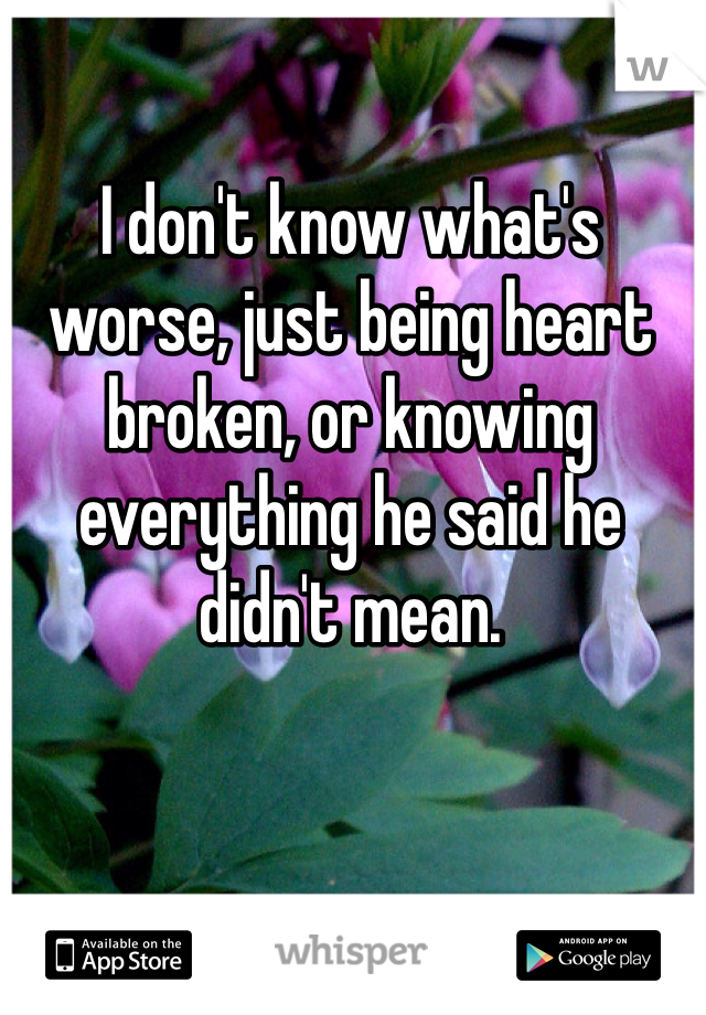I don't know what's worse, just being heart broken, or knowing everything he said he didn't mean.