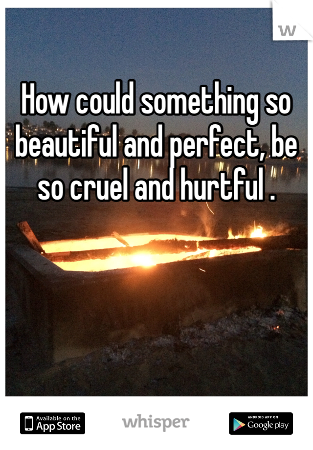How could something so beautiful and perfect, be so cruel and hurtful .
